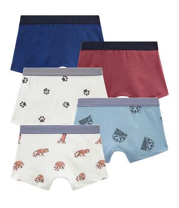 Set van 5 boxers voor jongens set .